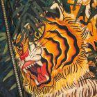 DSquared Jacket Tiger Print  - Black / Orange  21787CP -6