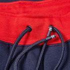 Sweatpants - Navy / Red