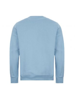 Zebra Sweatshirt - Light Blue