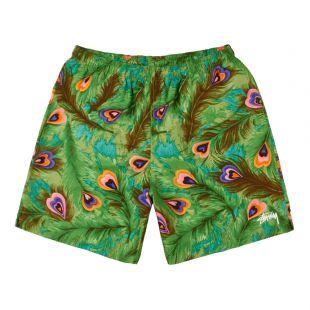 Stussy Swim Shorts | 113111 GREEN