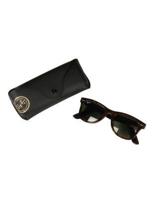 Wayfarer Sunglasses - Havana / Green