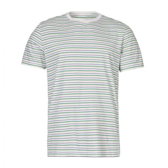 albam t-shirt ALM611420219 012 stripe white / green