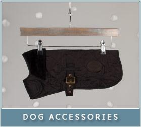 Dog Accessories